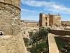 Alcazabal-1-Al-G