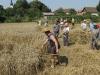 Reise-Landwirtschaft-kl